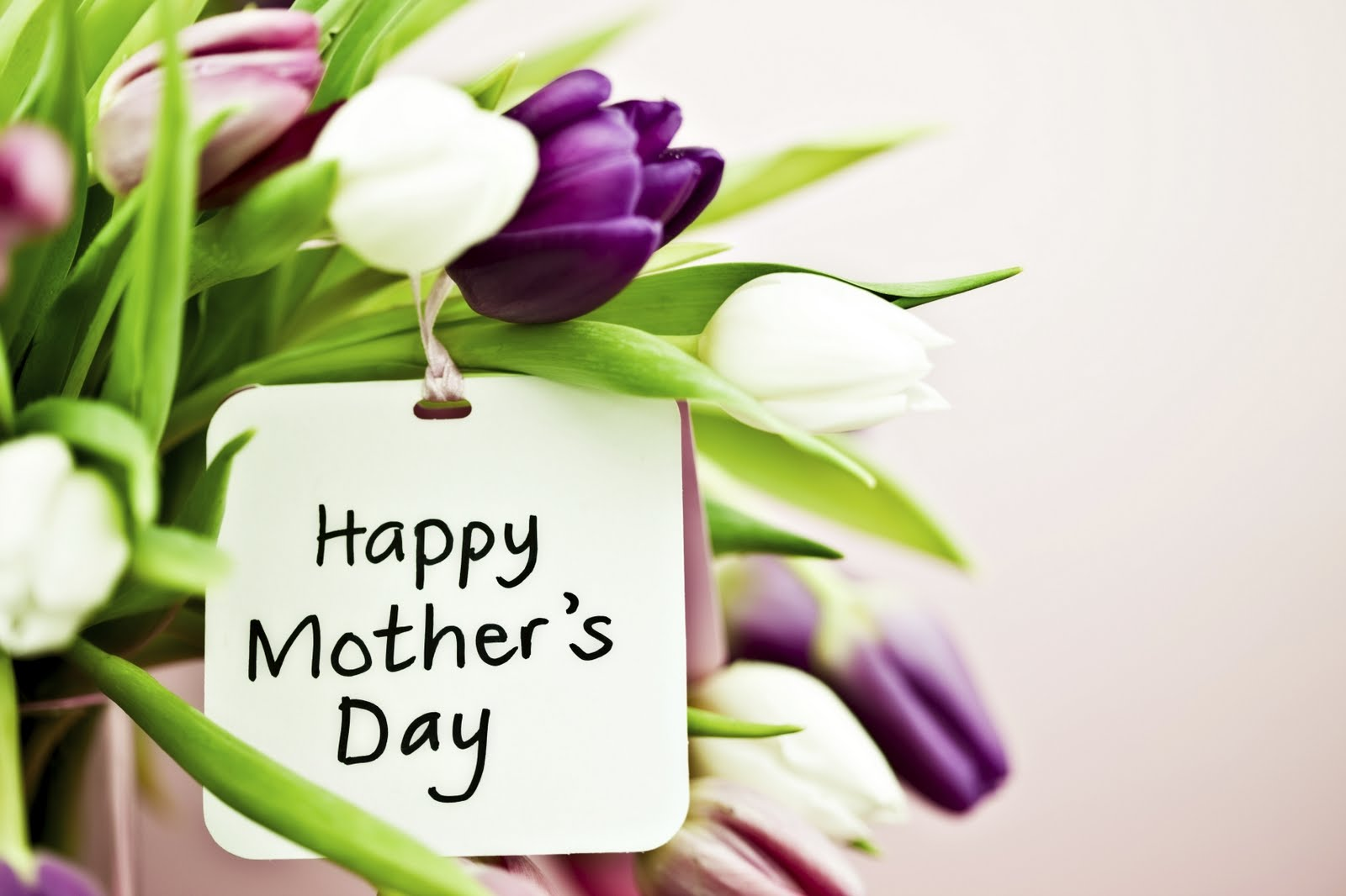 Mother S Day Flowers Hanoi Flower Shop